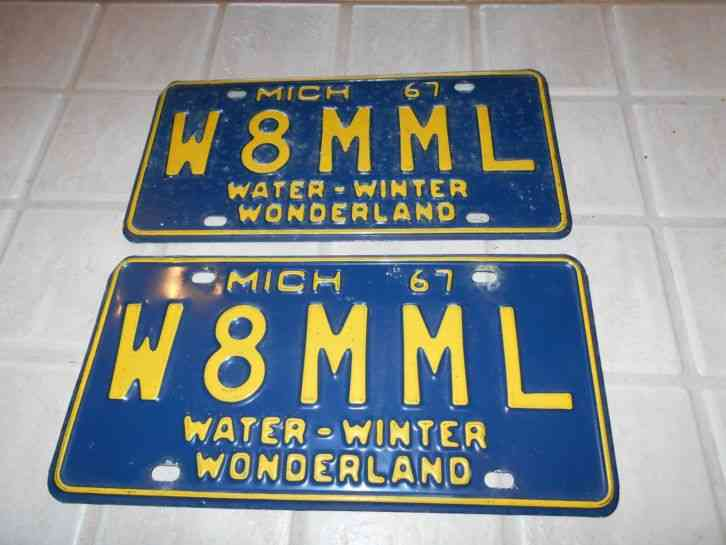 Michigan License Plates for Sale - The Tag Dr. Store