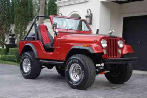 jeep cj cj7 1976 5 4x4 304 ci v8 engine edelbrock. Black Bedroom Furniture Sets. Home Design Ideas
