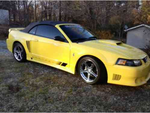 ford mustang saleen 2001 supercharged convertible excellent condition. Black Bedroom Furniture Sets. Home Design Ideas