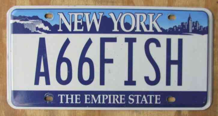 A66fish new york license plate 2005 a 66 fish for Nys fishing license online