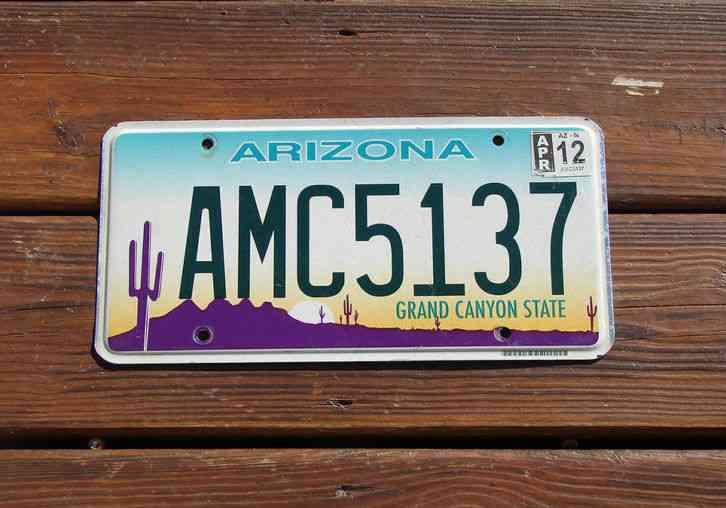 Arizona license plate desert cactus flat amc 5137 for Fishing license az price