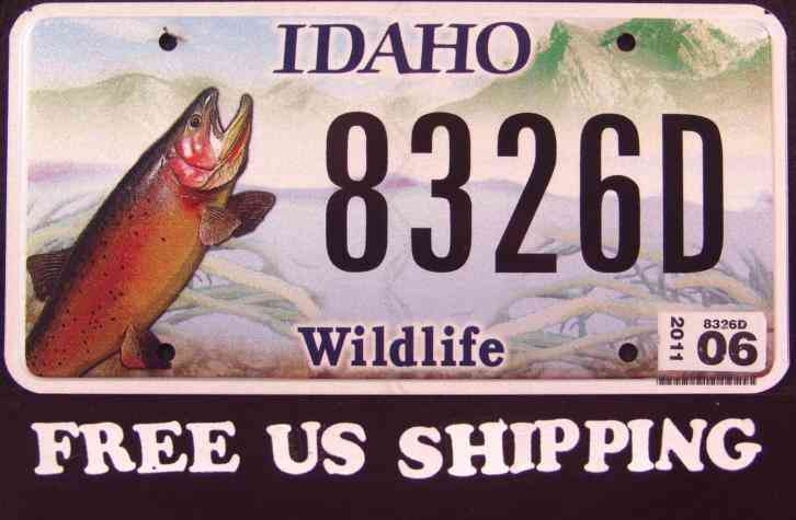 Idaho wildlife trout fish id graphic license plate free for Oklahoma fishing license age