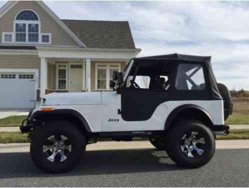 Jeep Cj Cj5 1980 Reduced Custom 5 Restored From The