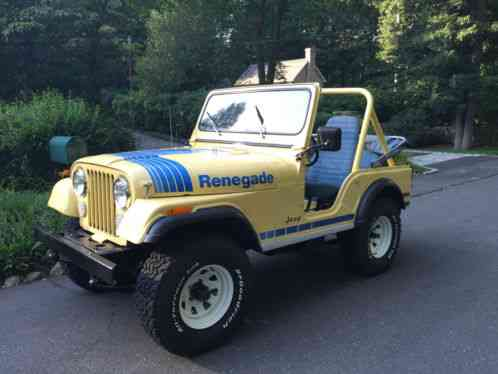 Toyota Touch Up Paint >> Jeep CJ 1979, 5 RenegadeRare Color: Saxon Yellow with ...