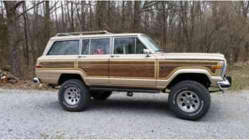 jeep wagoneer 1989 gran amc 360 v8 2 barrel 727. Black Bedroom Furniture Sets. Home Design Ideas
