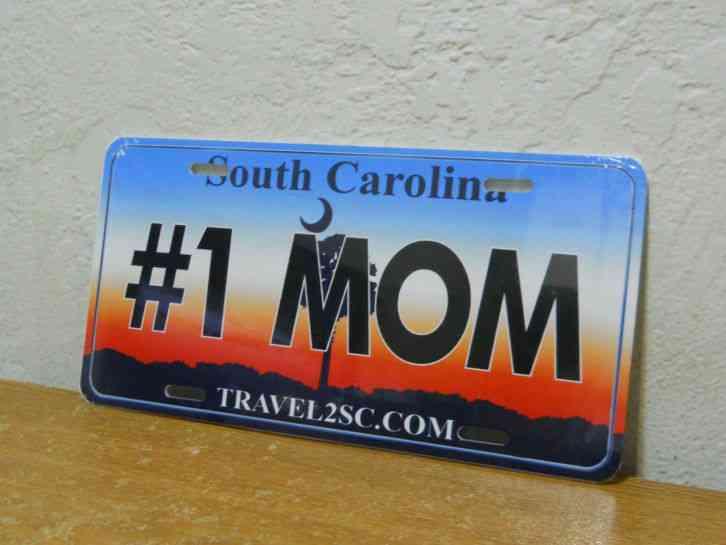 South Carolina Accepted Car Insurance