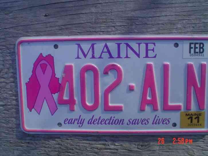 Rhode Island Breast Cancer Plates