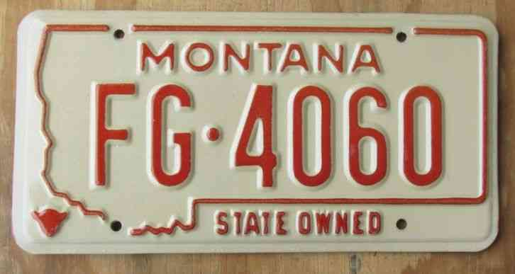Montana fish game license plate 1976 fg 4060 for Vt fish and game license