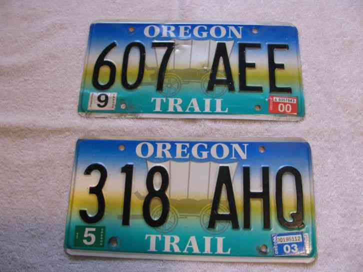 1999 oregon pair license plates snk 916 for Florida fishing license military