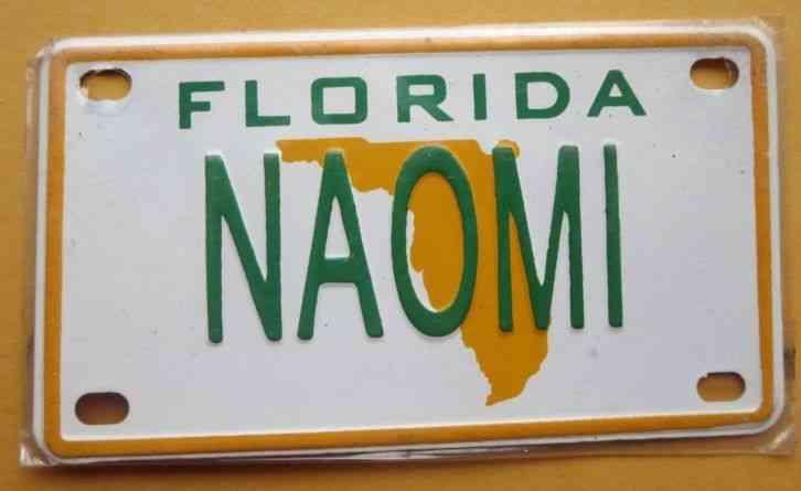 Personalized Florida Naomi Mini Bike Bicycle Vanity