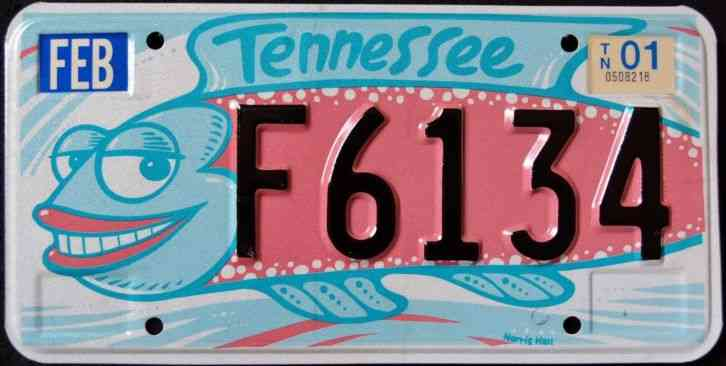 Tennessee arts silly fish tn graphic license plate for Tn fishing license online