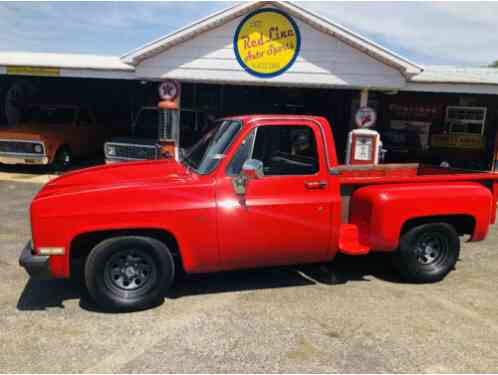 Chevrolet Other Pickups Regular Cab (1987)